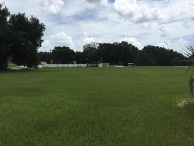 0 SE 159TH Terrace, Weirsdale, FL 32195 (MLS #505221) :: Better Homes & Gardens Real Estate Thomas Group
