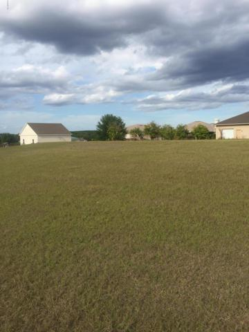 17791 SE 159th Avenue, Weirsdale, FL 32195 (MLS #516075) :: Bosshardt Realty