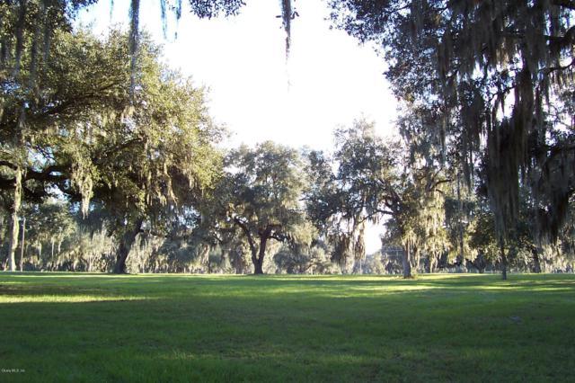12808 NW 154th Avenue Road, Morriston, FL 32668 (MLS #518124) :: Pepine Realty