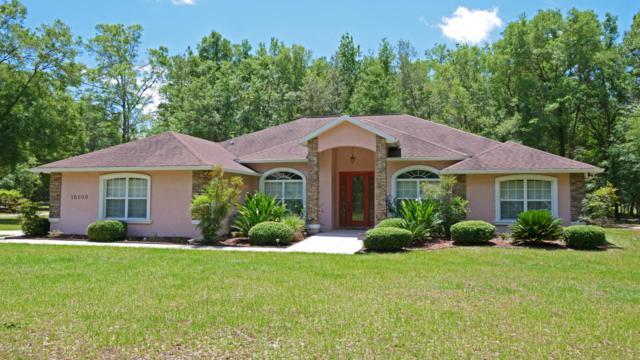 16000 NW 53rd Street, Morriston, FL 32668 (MLS #519004) :: Bosshardt Realty