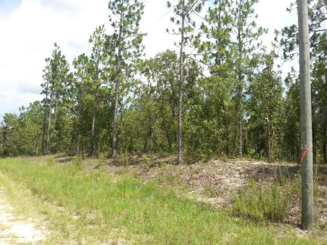 0 SW 90 Place, Dunnellon, FL 34432 (MLS #521519) :: Realty Executives Mid Florida