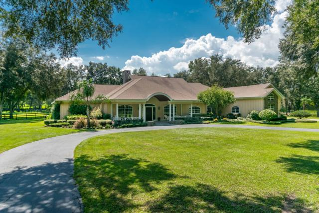 1715 NW 114th Loop, Ocala, FL 34475 (MLS #522594) :: Bosshardt Realty