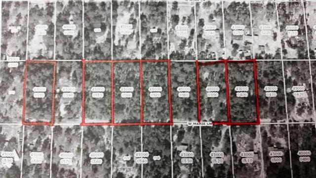 6881 W Mable Lane, Dunnellon, FL 34433 (MLS #524640) :: Bosshardt Realty
