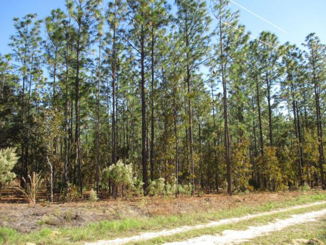 0 SW 127 Ave Road, Dunnellon, FL 34432 (MLS #527442) :: Realty Executives Mid Florida