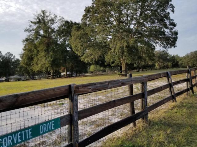 Address Not Published, Ocala, FL 34476 (MLS #528140) :: Bosshardt Realty