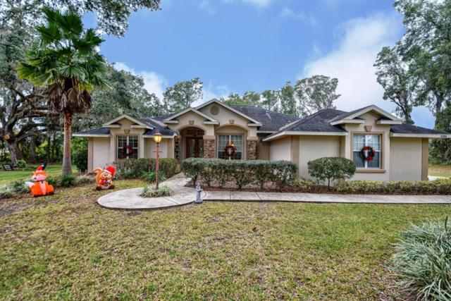 3300 SE 45th Avenue, Ocala, FL 34480 (MLS #528387) :: Pepine Realty