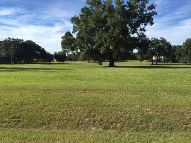 TBD NE 19th Avenue, Ocala, FL 34479 (MLS #528945) :: Bosshardt Realty