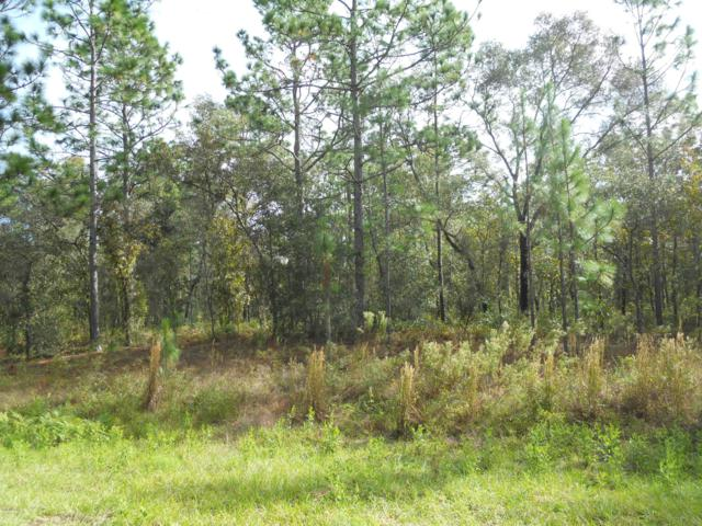 TBD SW 125 Terrace, Dunnellon, FL 34432 (MLS #529344) :: Thomas Group Realty