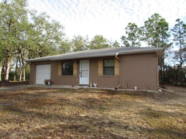 5409 SW 176 Avenue, Dunnellon, FL 34432 (MLS #530295) :: Realty Executives Mid Florida