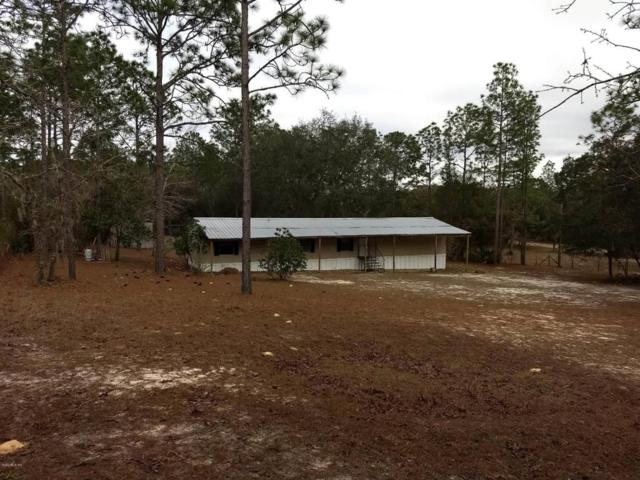 5553 SW 181st Court, Dunnellon, FL 34432 (MLS #530368) :: Realty Executives Mid Florida