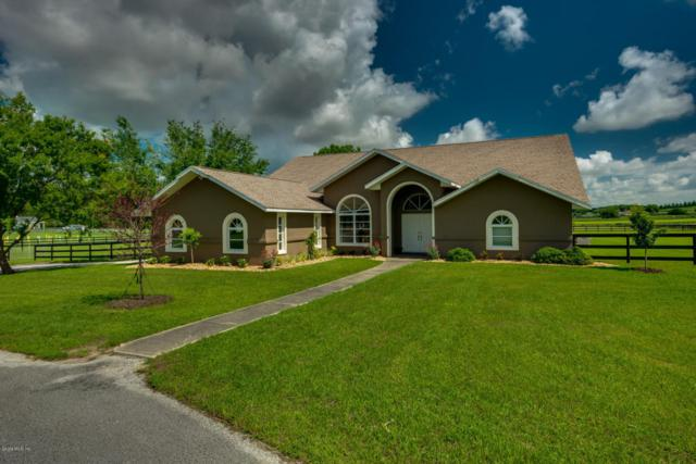 1900 NW 114th Loop, Ocala, FL 34475 (MLS #531394) :: Bosshardt Realty