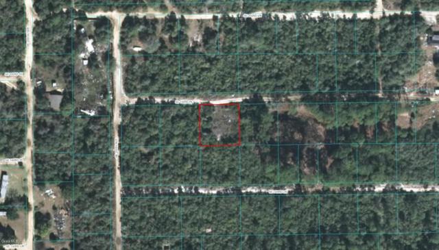 21068 SE 143rd Place, Umatilla, FL 32784 (MLS #532526) :: Bosshardt Realty