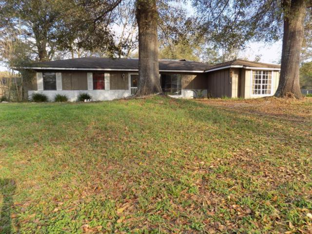 4459 NE 22nd Avenue, Ocala, FL 34479 (MLS #532633) :: Bosshardt Realty