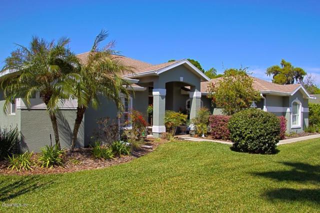 3218 SE 23rd Avenue, Ocala, FL 34471 (MLS #532790) :: Bosshardt Realty