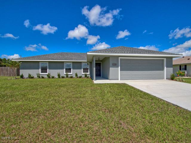 12300 SE 100th Court, Belleview, FL 34420 (MLS #533222) :: Bosshardt Realty