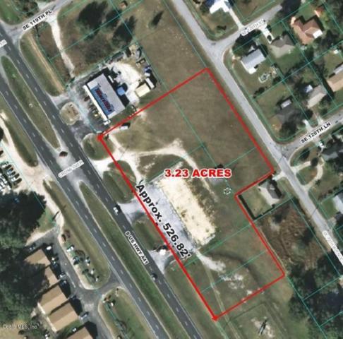 12101 SE Us Highway 441, Belleview, FL 34420 (MLS #533655) :: Pepine Realty