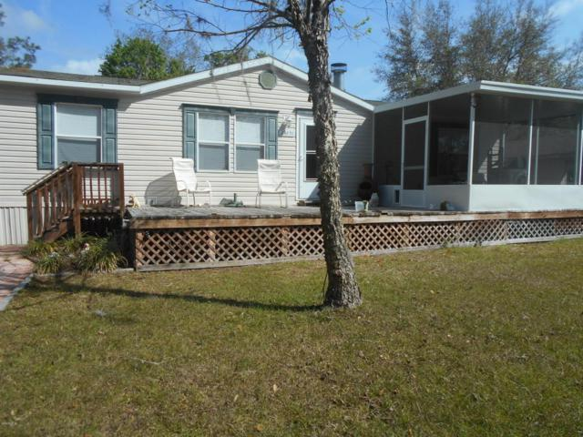 23651 NE 134th Lane Road, Fort Mccoy, FL 32134 (MLS #533942) :: Bosshardt Realty