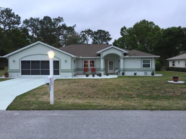 6040 SW 103rd Loop, Ocala, FL 34476 (MLS #534004) :: Bosshardt Realty