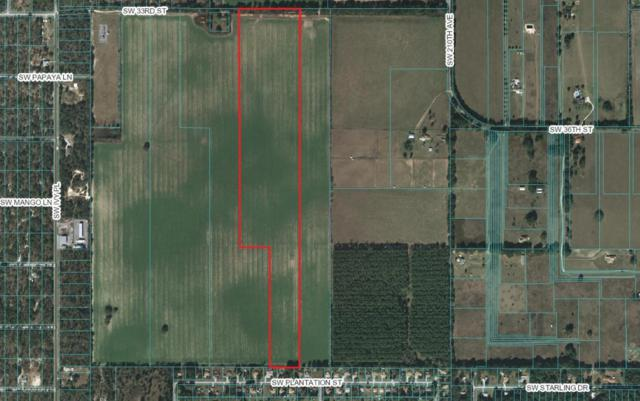 5043 SW 33rd Street, Dunnellon, FL 34431 (MLS #534016) :: Bosshardt Realty