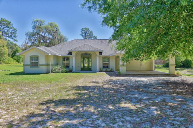 4981 NE 110th Street, Anthony, FL 32617 (MLS #535084) :: Pepine Realty