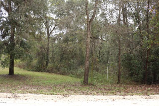 0 SW 165th Avenue Road, Ocala, FL 34481 (MLS #535094) :: Realty Executives Mid Florida