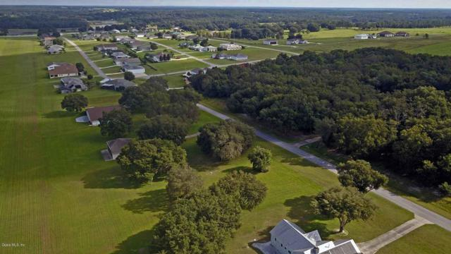 158 SE 158th Terrace, Weirsdale, FL 32195 (MLS #535715) :: Better Homes & Gardens Real Estate Thomas Group
