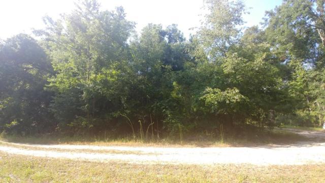 0 NW 123rd Lane, Citra, FL 32113 (MLS #536240) :: Bosshardt Realty