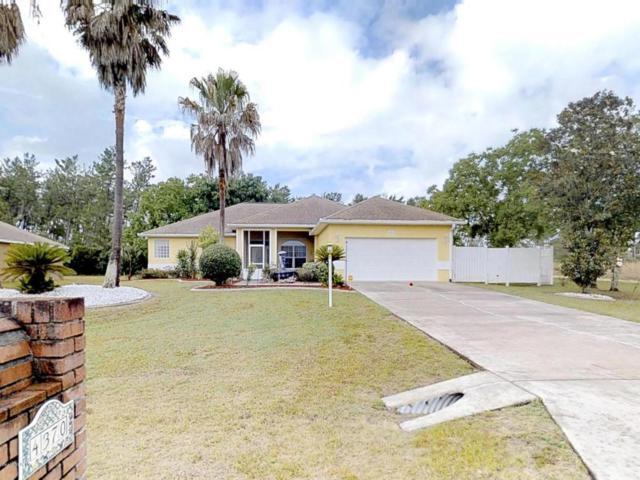 4370 SW 103rd Street Road, Ocala, FL 34476 (MLS #536388) :: Bosshardt Realty