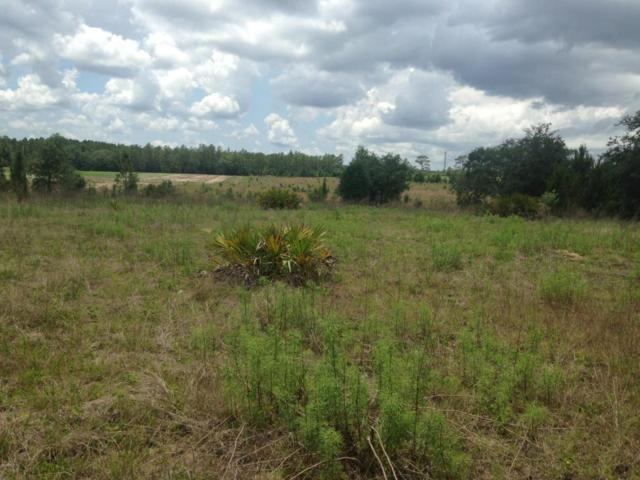 00 SW 66 Loop, Dunnellon, FL 34432 (MLS #536680) :: Realty Executives Mid Florida