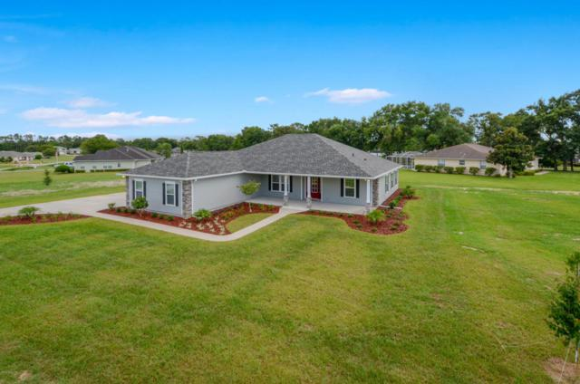 6730 SE 99th Place, Belleview, FL 34420 (MLS #537340) :: Bosshardt Realty