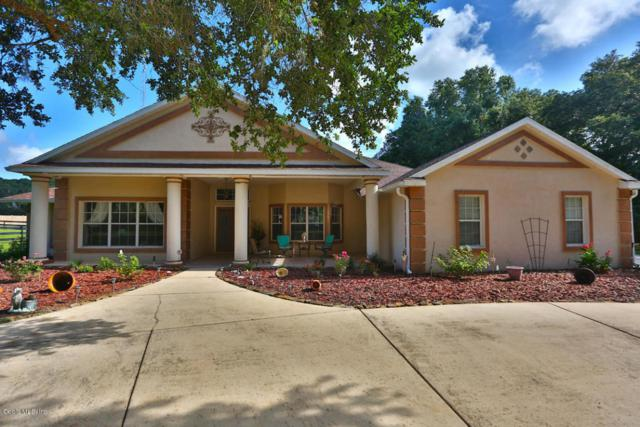 679 SE 131st Street, Ocala, FL 34480 (MLS #537717) :: Bosshardt Realty
