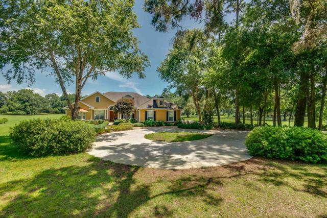 6781 NW 12th Street, Ocala, FL 34482 (MLS #537935) :: Bosshardt Realty