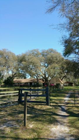 10381 SW 67th Court, Ocala, FL 34476 (MLS #538233) :: Bosshardt Realty