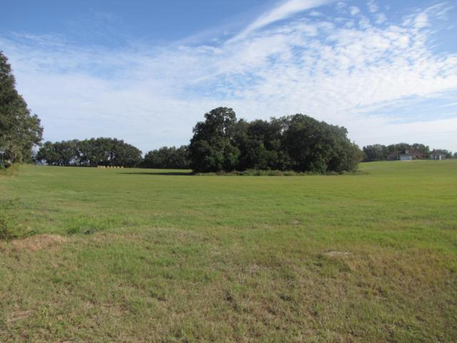 00 SW 3rd Lane, Dunnellon, FL 34431 (MLS #539903) :: Realty Executives Mid Florida