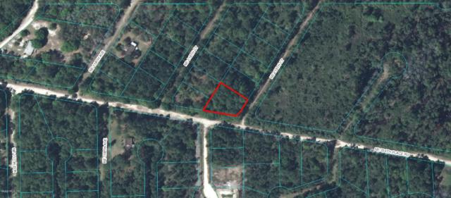 00 NE 234TH PL Road, Fort Mccoy, FL 32134 (MLS #540235) :: Pepine Realty