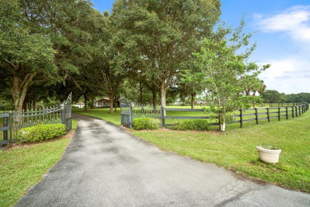 1679 NW 114th Loop, Ocala, FL 34475 (MLS #540402) :: Bosshardt Realty