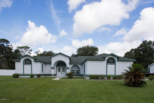10030 SW 74th Terrace, Ocala, FL 34476 (MLS #540407) :: Pepine Realty