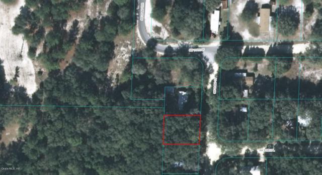 11940 SW 232nd Court, Dunnellon, FL 34431 (MLS #540849) :: Bosshardt Realty