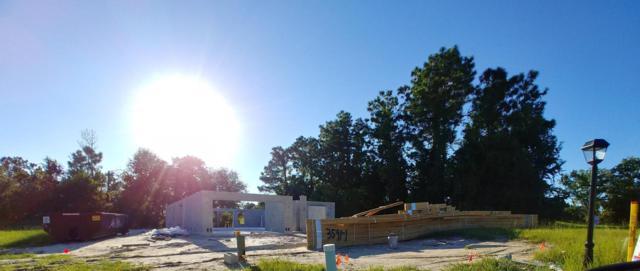 14 Diamond Ridge Place Way, Ocala, FL 34472 (MLS #540900) :: Bosshardt Realty