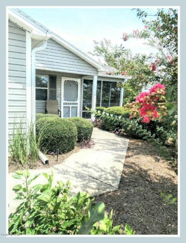 379 Arbella Loop, The Villages, FL 32162 (MLS #542502) :: Bosshardt Realty