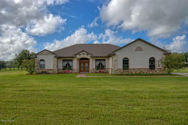 16970 NW 130th Street, Williston, FL 32696 (MLS #542986) :: Pepine Realty