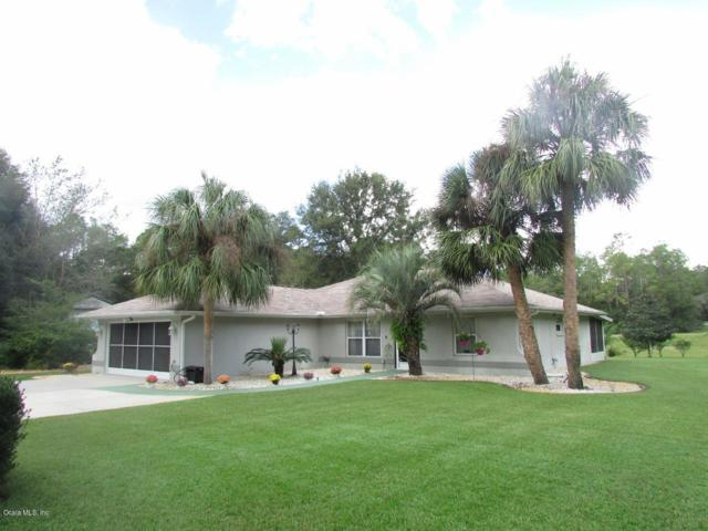 21717 SW 87th Loop, Dunnellon, FL 34431 (MLS #543721) :: Thomas Group Realty