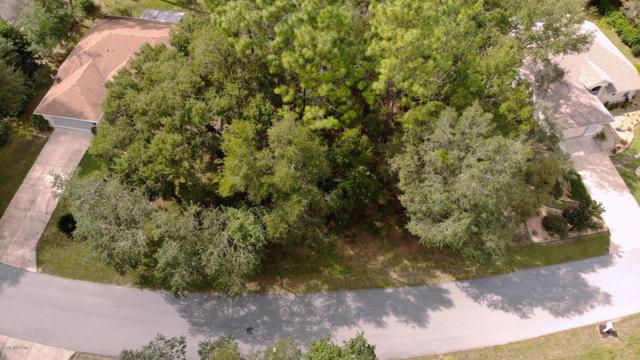 00 SW 188th Court, Dunnellon, FL 34432 (MLS #545072) :: Realty Executives Mid Florida