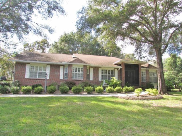 8700 SW 206TH COURT, Dunnellon, FL 34431 (MLS #545095) :: Realty Executives Mid Florida