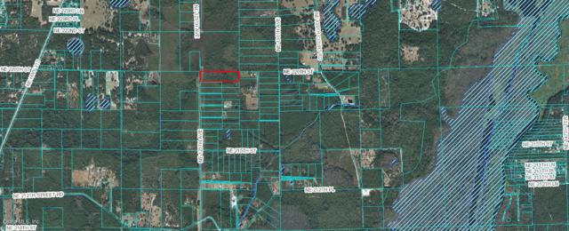 00 NE 125TH Avenue, Fort Mccoy, FL 32134 (MLS #545862) :: Bosshardt Realty
