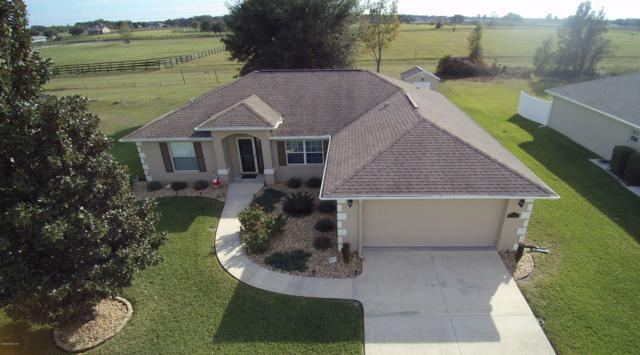 5510 SW 89th Place, Ocala, FL 34476 (MLS #546842) :: Bosshardt Realty