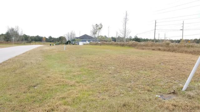 0 SW 134th Loop, Ocala, FL 34473 (MLS #547552) :: Realty Executives Mid Florida