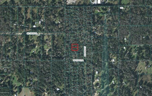 lot 38-43 SE 41 Ter Terrace, Belleview, FL 34420 (MLS #548580) :: Thomas Group Realty