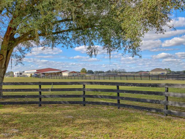 1890 SE Highway 41, Williston, FL 32696 (MLS #548675) :: Pepine Realty