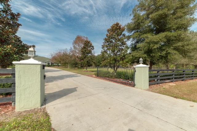 14510 NW 147th Court, Williston, FL 32696 (MLS #548933) :: Pepine Realty